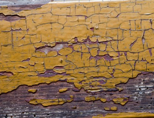 7 Reasons why lead paint is harmful